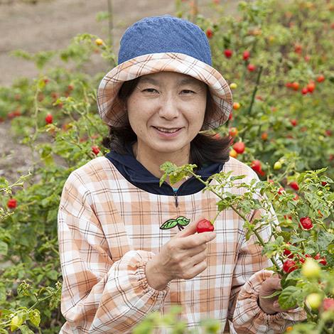 糸島内場農園